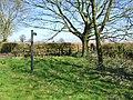 Footpath and farm entrance - geograph.org.uk - 467821.jpg