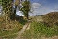 Footpath at Badshear Lane - panoramio.jpg