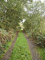 Footpath from Plumley Farm - geograph.org.uk - 268195.jpg