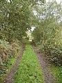Footpath from Plumley Farm - geograph.org.uk - 268195.jpg
