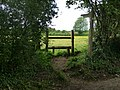 Footpath to Blendworth - geograph.org.uk - 1317171.jpg
