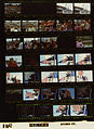 Ford B1642 NLGRF photo contact sheet (1976-09-25)(Gerald Ford Library).jpg