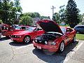 Ford Mustangs (5995726649).jpg