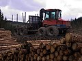 Forestry machinery - geograph.org.uk - 740699.jpg