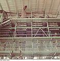 Fotothek df n-30 0000142 Facharbeiter für Glastechnik.jpg