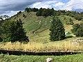 "Freilichtmuseum am Kolovrat (1114 m) beim ""Pot Miru"", Friedensweg in Tolmin, Slowenien, EU.jpg"