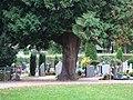 Friedhof Materborn PM19-11.jpg