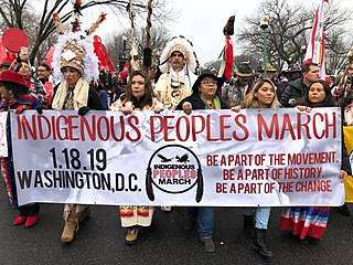 Indigenous Peoples March Political demonstration on the National Mall in Washington (18 January 2019 )