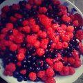 Fruta mjekesore1.jpg