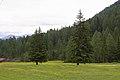 Fulpmes Stubaital - panoramio (29).jpg
