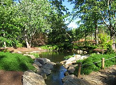 Furman University Japanese Garden - pool 1.JPG