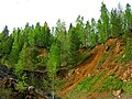 G. Nizhnyaya Tura, Sverdlovskaya oblast' Russia - panoramio - Oleg Seliverstov (5).jpg