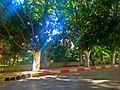 Garden Jamal Abdel Nasser in the city of Nablus.JPG