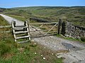 Gate and stile on the Hornby Road - geograph.org.uk - 1897464.jpg