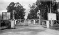 Gate in the Rabbit Fence at Stanthorpe, Christmas 1934.tiff