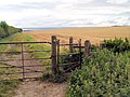 Gate to farmland. - geograph.org.uk - 523217.jpg