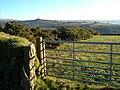 Gateway near Standon Steps - geograph.org.uk - 300303.jpg