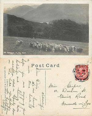 G. P. Abraham - Gathering the Fell Sheep, G. P. Abraham Ltd postcard