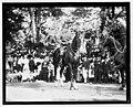 Gen. Pershing parade, Sept. 17, 1919 LCCN2016844480.jpg