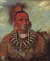 George Catlin - Shon-ta-yi-ga, Little Wolf, a Famous Warrior - 1985.66.521 - Smithsonian American Art Museum.jpg