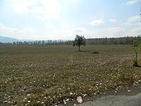 Georgia - Dmanisi environs.jpg