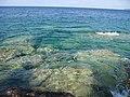 Georgian Bay, Georgian Bay-Marr Lake Trail (3882957502).jpg