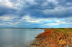 Gfp-texas-galveston-island-state-park-inlet-shore.jpg