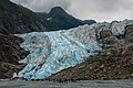Glaciar Davidson, Haines, Alaska, Estados Unidos, 2017-08-18, DD 88.jpg