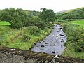 Glenark River - geograph.org.uk - 229678.jpg
