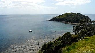 Marine reserve - Cape Rodney-Okakari Point, Goat Island Marine Reserve (Leigh, Warkworth, New Zealand).