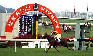 Gold-Fun Irish-bred Thoroughbred racehorse