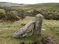 Granite posts, Fowey valley - geograph.org.uk - 705624.jpg
