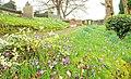 Graveyard, St Patrick's, Drumbeg (1) - geograph.org.uk - 1199065.jpg