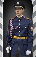Guard at the Prague castle, Prague - 7620