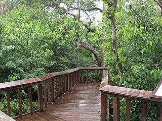 Gumbo Limbo Environmental Complex Nature center in Boca Raton, Florida