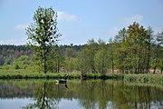 Gzel Mały lake, Rybnik 02.jpg