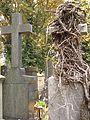 Hřbitov Malvazinky (054).jpg