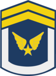 Hạ Sĩ-Airforce 1.png