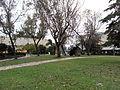 HUJI VIEW 20121205 162054.jpg
