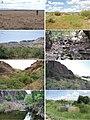Habitats (10.3897-zookeys.735.22200) Figure 2.jpg