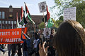 Halmstad demonstration against attack on Ship to Gaza.jpg
