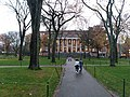 Harvard University,. November, 2019. pic.bb8.jpg