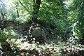 Harz Linde über Ruinenreste der Lauenburg - panoramio (1).jpg