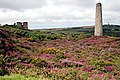 Heather covered Ruins at Wheal Basset Stamps - geograph.org.uk - 533357.jpg