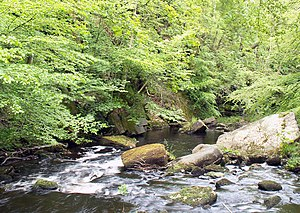 Hardcastle Crags - Image: Hebden Water near Hardcastle Crags geograph.org.uk 269736