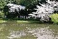 Heian Jingu Garden (3484424121).jpg