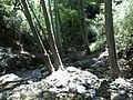 Holly Jim Trail - panoramio (10).jpg
