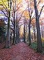 Holsbeek - panoramio.jpg