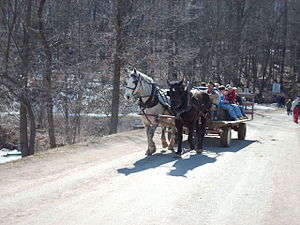 Malabar Farm State Park - Horses at the Maple Sugar Festival in 2007.