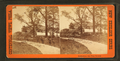 Horticultural Hall from Grounds, from Robert N. Dennis collection of stereoscopic views.png